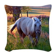 Evening Sun Woven Throw Pillow
