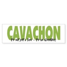 Cavachon ADVENTURE Bumper Bumper Sticker