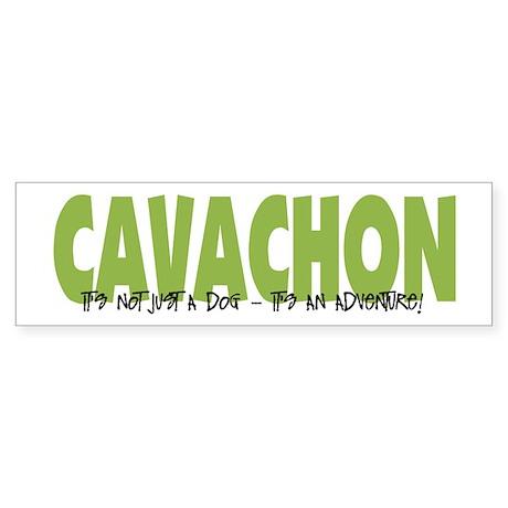 Cavachon ADVENTURE Bumper Sticker