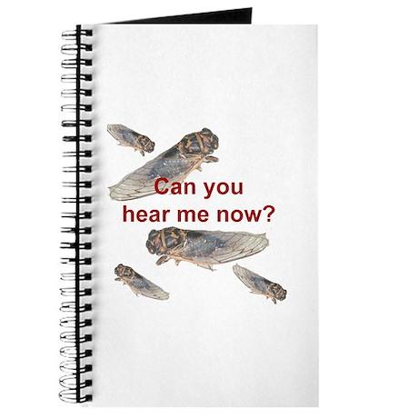 Cicada noise Journal