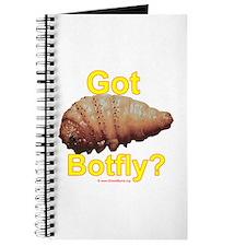 Got Botfly (bot fly, Dermatobia hominis) Journal