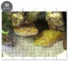 Dani & Chromie in the cave Puzzle