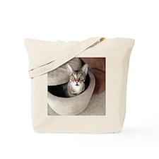 Occupied Cat Tote Bag