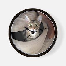 Occupied Cat Wall Clock