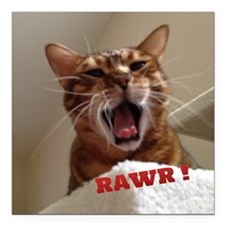 "Rawr Kitty Square Car Magnet 3"" x 3"""