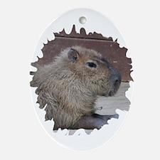 Capybara Ornament (Oval)