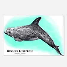 Risso's Dolphin Postcards (Package of 8)