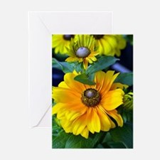 Yellow rudbeckia flowers Greeting Cards