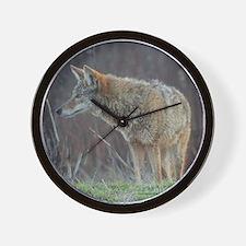 Wild Coyote Wall Clock