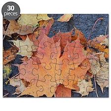 Maple    Puzzle