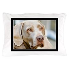 Weimaraner Pillow Case