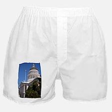 Sac Cap 601 Boxer Shorts