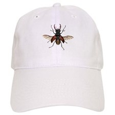 Flying Stag Beetle Baseball Cap
