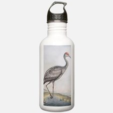 Funny Cranes Water Bottle