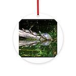 TURTLES Ornament (Round)