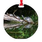 TURTLES Ornament
