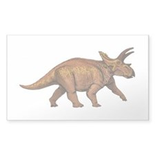 Anchiceratops Decal