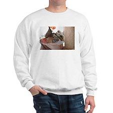 Little Georgie Hairlesson Sweatshirt