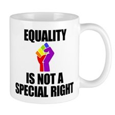 EQUALITY IS NOT A SPECIAL RIGHT Mugs