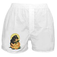 Black Cat and Pumpkin Boxer Shorts