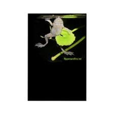 Cool Frogs tote Rectangle Magnet