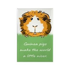 Guinea pigs make the world... Rectangle Magnet