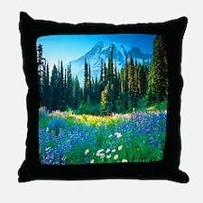 Scenic Mountain Throw Pillow