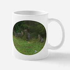 RED FOX AND KITS Mugs