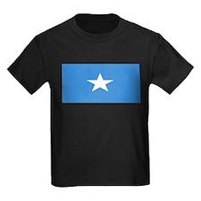 Somaliablank.jpg T
