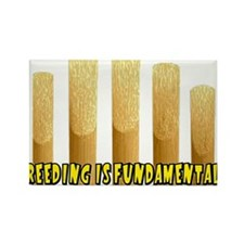 reeding Magnets