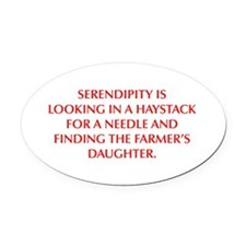 SERENDIPITY IS LOOKING IN A HAYSTACK FOR A NEEDLE