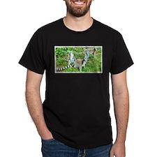 Ring-tailed Lemurs Group T-Shirt