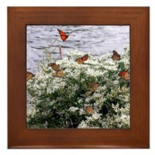 Monarchs on a Babys Breath Rest stop Framed Tile