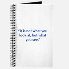 It is not what you look at but what you see Journa