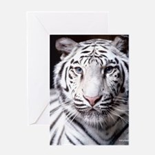 White Bengal Tiger Greeting Cards
