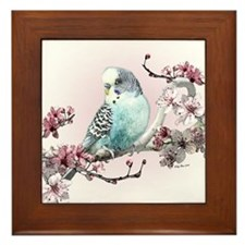 Parakeet And Cherry Blossoms - Framed Tile