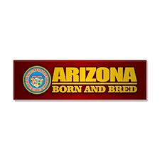 Arizona Born and Bred Car Magnet 10 x 3