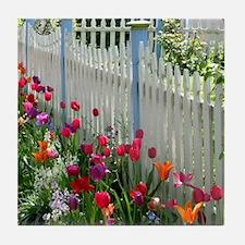 Tulips Garden along White Picket Fence 1 Tile Coas
