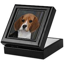 Picture Perfect Beagle Keepsake Box