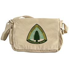 Mount Rainer Messenger Bag