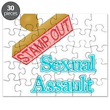 Sexual Assault Puzzle