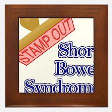 Short Bowel Syndrome Framed Tile