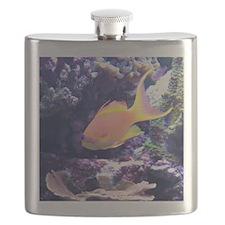 Tropical Fish 1 Flask