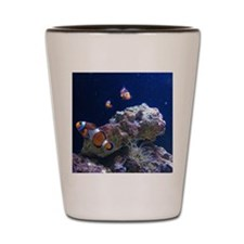 Clown Fish 5 Shot Glass