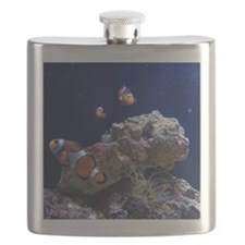 Clown Fish 5 Flask