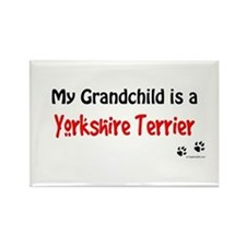 Yorkie Grandchild Rectangle Magnet