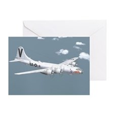Funny B airplane Greeting Cards (Pk of 10)