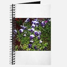 Purple Pansies Journal