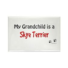 Skye Terrier Grandchild Rectangle Magnet