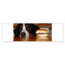 Cute Bernese mountain dog Bumper Sticker